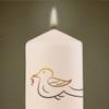 Kerze für Nancy Franke für